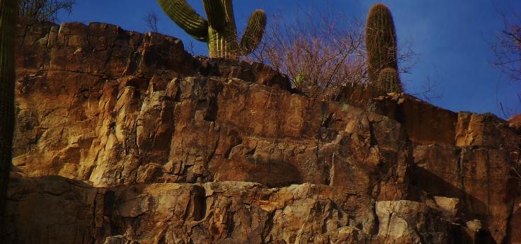 Petroglyph I