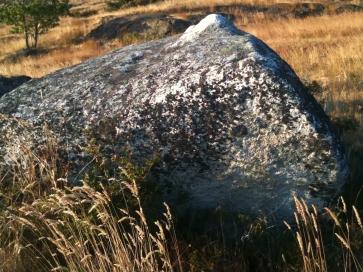 Whale Stone - Haro Strait, San Juan Island
