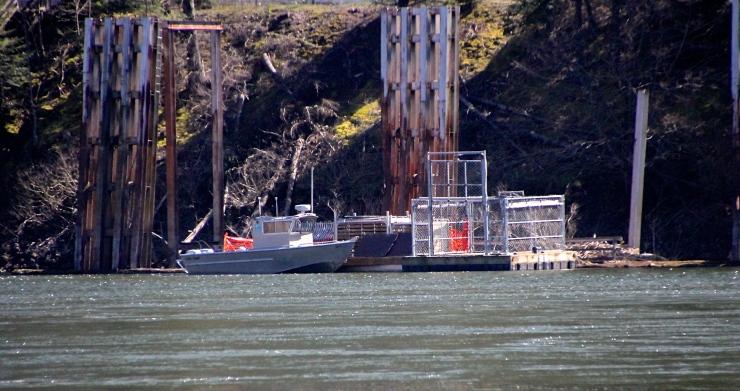 Sea Lion Traps at Bonneville