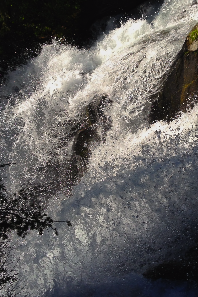 Living Waters - Paradise, Tahoma
