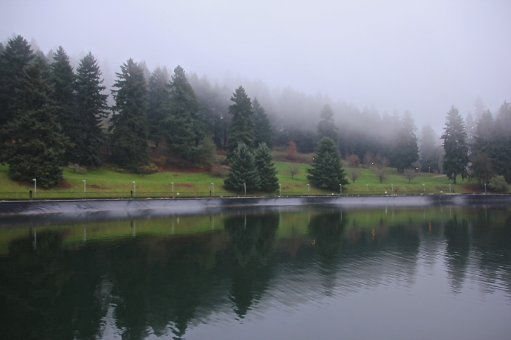Sublime Beauty of the Waters at Mt Tabor Reservoir # 5 - This may soon become little more than memory