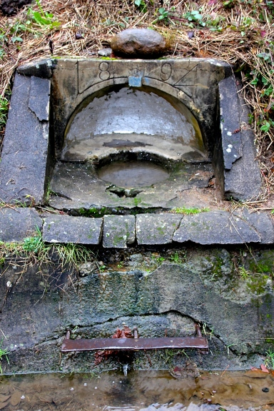 1894 Water Alter at Mt. Tabor Reservoir # 1