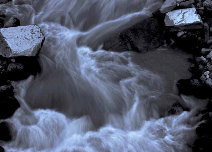 Medicine Water - Nisqually I