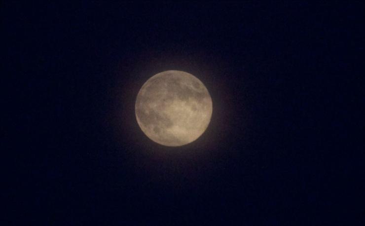 Huckleberry Medicine Moon IV
