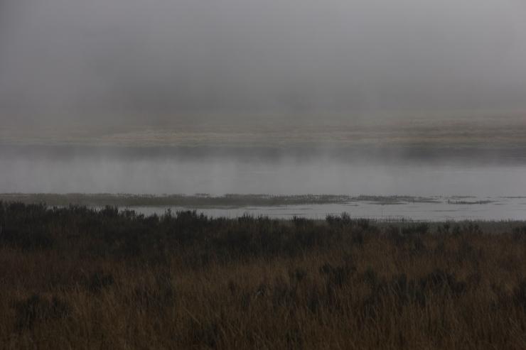 Haydn Valley I