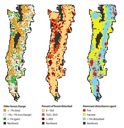 This outlines what is driving change in ancient forests  - trends of late-successional old-growth forest over the monitoring periods 1994 to 2007 in California and 1996 to 2006 in Washington and Oregon - Federal lands went from 65 to 67 % of ancient forest during this monitoring period