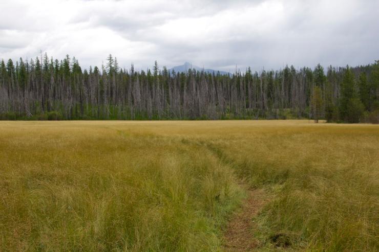 Northern Foot Path
