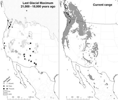 Last Glacial Maximum refuges