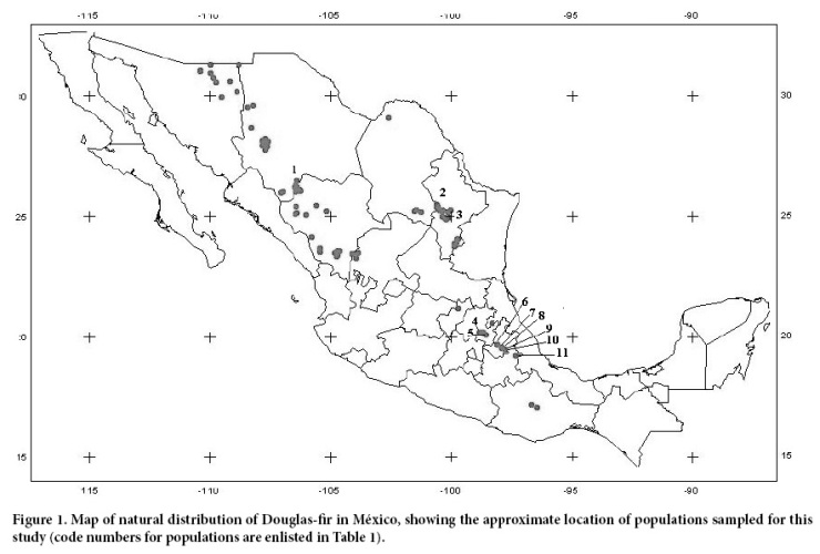Mexican Psuedotsuga locactions - in danger of extinciton within the century despite a nearly 2 million year run