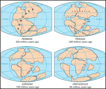 Pangea and the formation for the continents