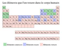 Elements essential to human life