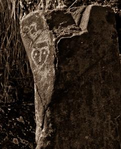 petroglyphs- nchi'wana-21