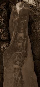 petroglyphs- nchi'wana-22