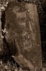 petroglyphs- nchi'wana-24