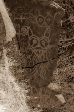 petroglyphs- nchi'wana-27
