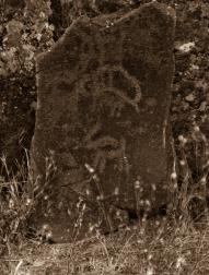 petroglyphs- nchi'wana-28