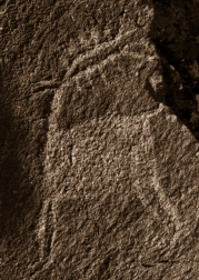 petroglyphs- nchi'wana-29