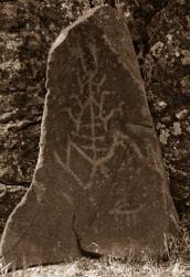 petroglyphs- nchi'wana-31