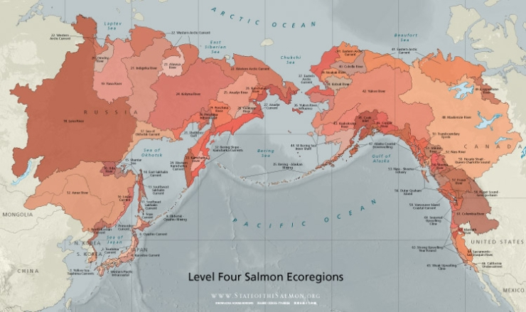 Ecoregion's of Salmon