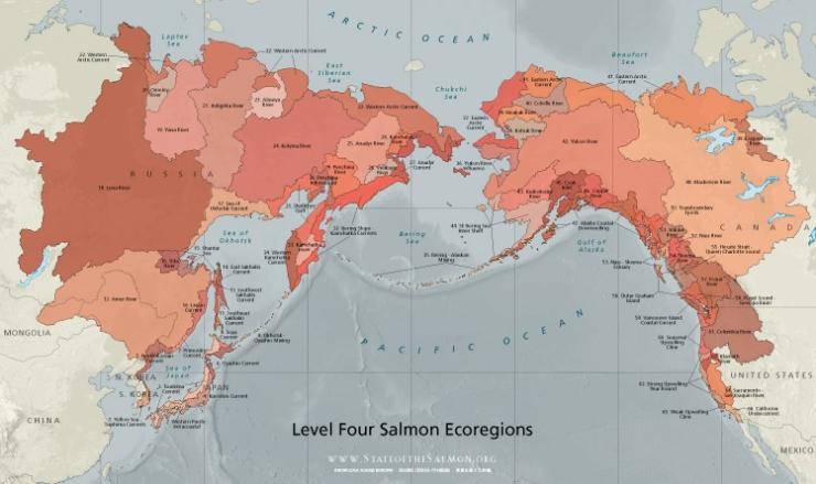 Ecoregion's of Salmon