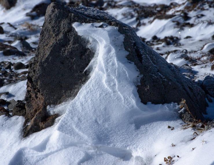 winter wyeast sculptures-13